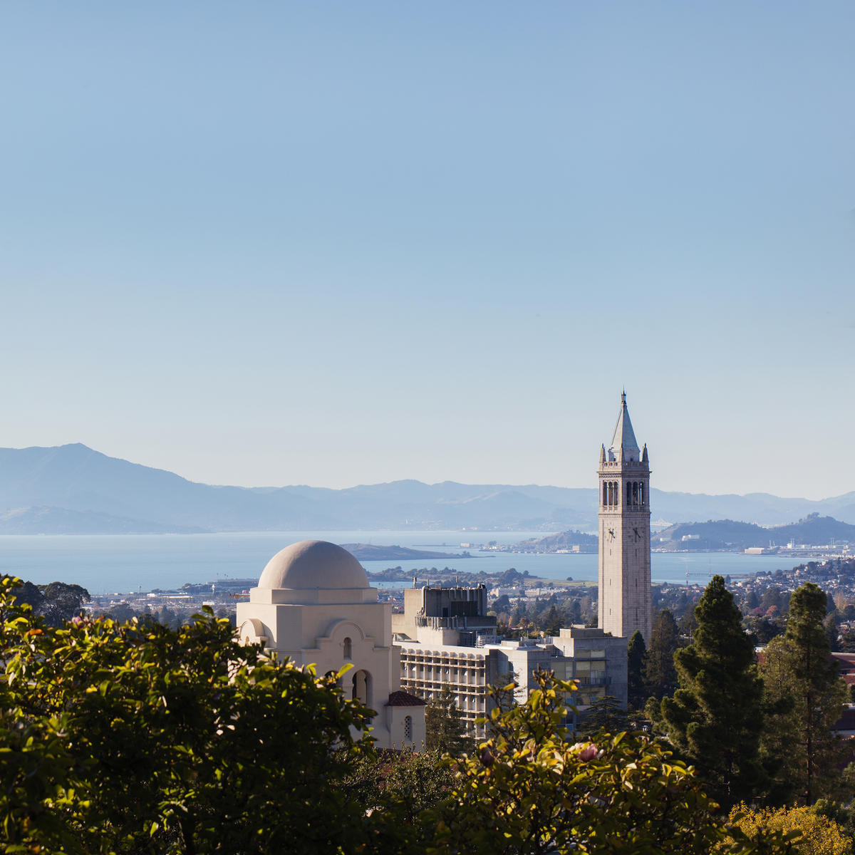 View of campanile and the bay